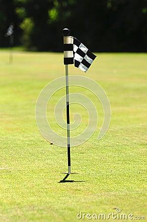 Golf flag on court