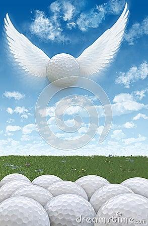 Golf Flight 2A