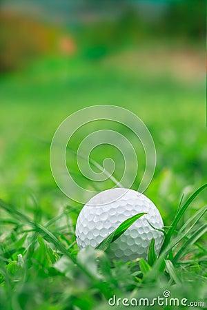 Golf on grass Rough