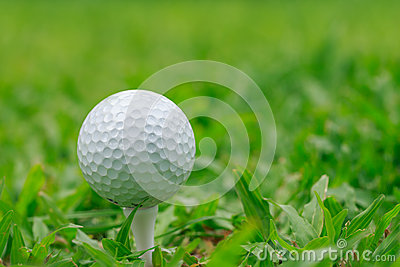 Golf on grass Rough