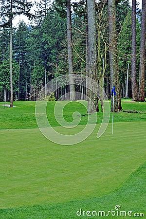 Golf Green Course