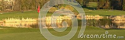 Golf Green Course Golfing BC