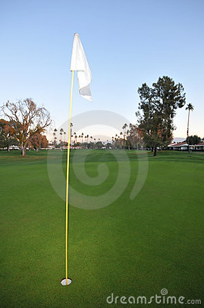 Golf green with pin, flag and fairway
