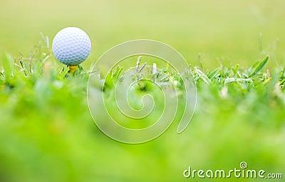 Golf Macro
