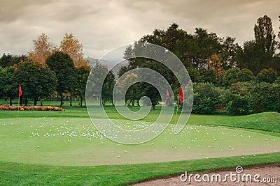 Golf meadow