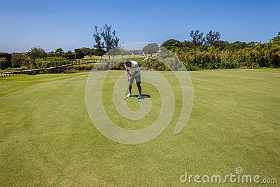 Golf Player Putting Short Hole Editorial Stock Photo