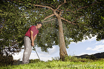 Golf player under tree.