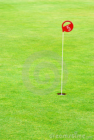 Free Golf Practice Putting Hole Royalty Free Stock Photography - 5004237