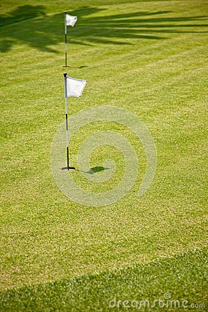 Golf Putting Green and Flag