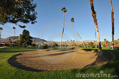 Golf sand trap with palm trees in fairway