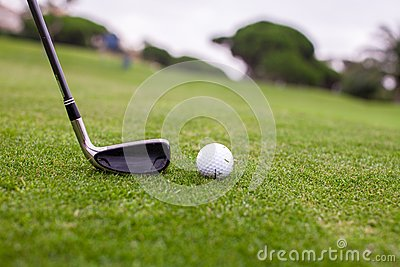 Golf stick and ball on green grass