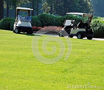 Golf on a Sunny Day 1