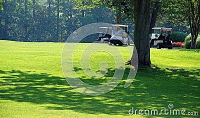 Golf on a Sunny Day 2