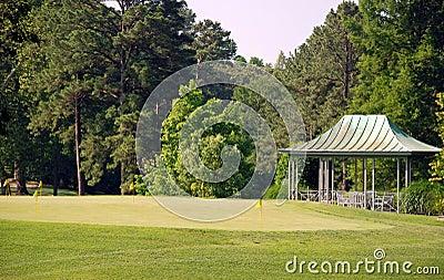 Golf on a Sunny Day 3