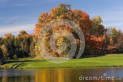 Golfansicht 10