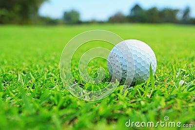 Golfbal in fairway