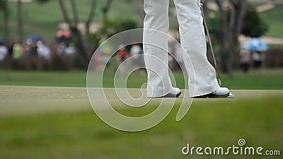 Golfball, der in das Loch einsteigt stock footage