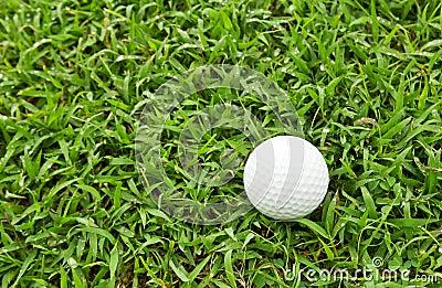 Golfboll på grönt gräs