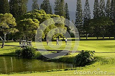 Golfing at Princeville Resort