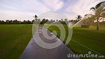 Golfplatzberieselungsanlage auf Fahrrinne während des goldenen Sonnenuntergangs stock video