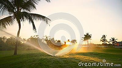 Golfplatzberieselungsanlage auf Fahrrinne während des goldenen Sonnenuntergangs stock footage