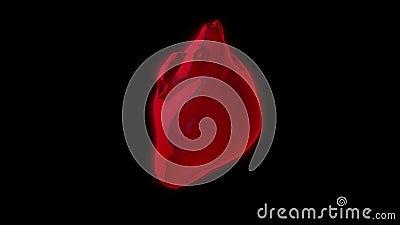 Golpeo rojo y rotación realistas del corazón del extracto aislados en el fondo negro, lazo inconsútil animaci?n Ser humano real stock de ilustración