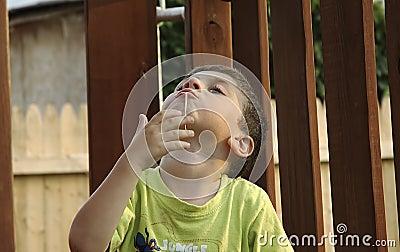 Gomma da masticare del bambino