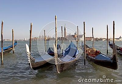 Gondolas moored near San Marco Piazza, Venice.
