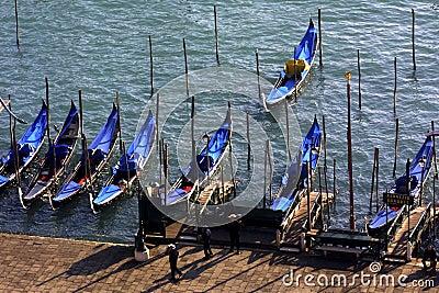 Gondolas parked near San Marco Piazza, Venice