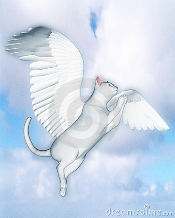 The Good Cat (White)