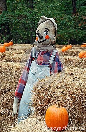 Goofy Scarecrow 2