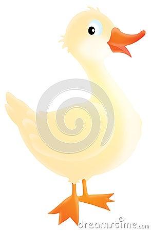 Free Goose Royalty Free Stock Photos - 11931938