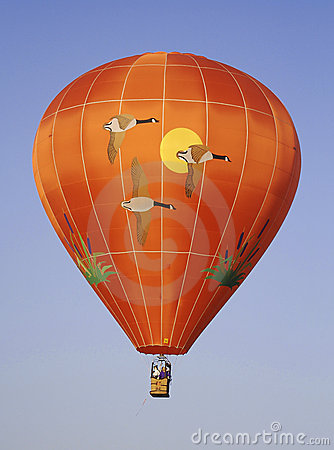 A goose themed hot air balloon