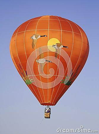 A goose themed hot air balloon