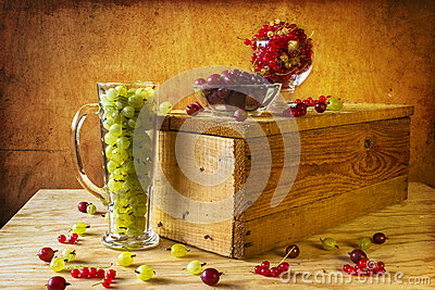 Gooseberry red currant fruits vintage