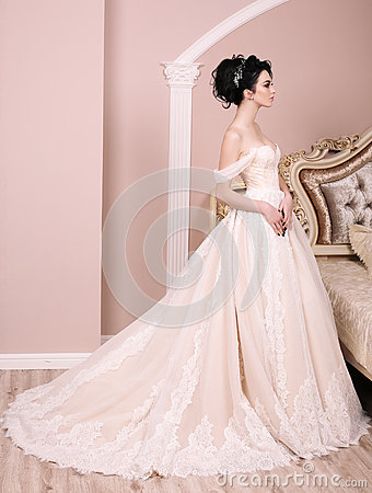 Free Gorgeous Bride With Dark Hair In Luxuious Wedding Dress Stock Photos - 85483653