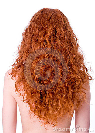 Curly Hair Cuts on Stock Photography  Gorgeous Curly Red Hair  Image  12995942