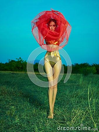 Gorgeous lady under veil