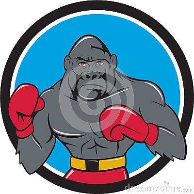 Gorilla Boxer Boxing Stance Circle Cartoon Stock ...