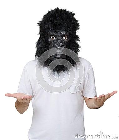 Free Gorilla Man Stock Image - 33359501