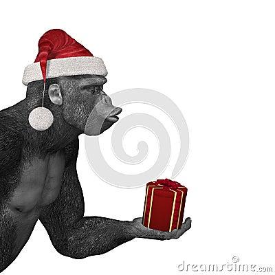 Gorilla Offering Gift Royalty Free Stock Photo - Image ...