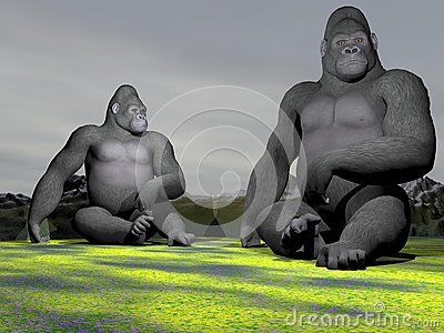 A gorilla who observe