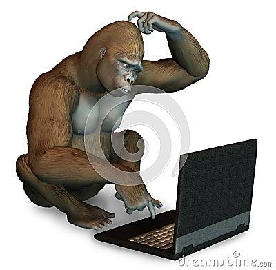 http://fr.dreamstime.com/gorille-perplexe-avec-un-ordinateur-portatif-thumb160102.jpg