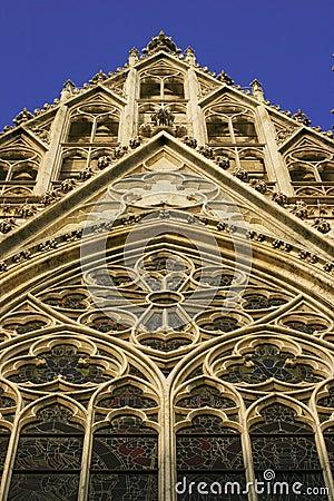 Gothic Cathedral - Votivkirche