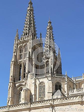 Gothic needles