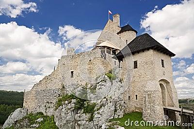 Gothic rocky castle.