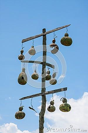 Gourd Bird Houses