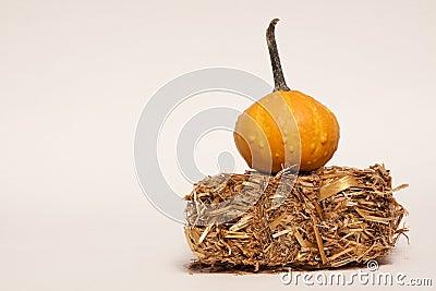Gourd On Hay