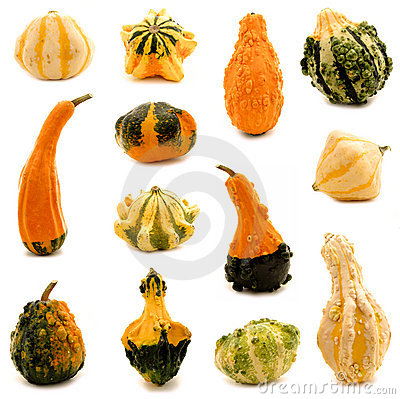 Free Gourds Royalty Free Stock Images - 21609999