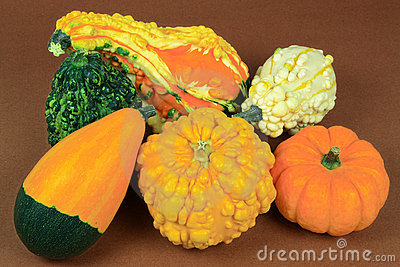 Gourds with smooth-skin and pebbled-skin.